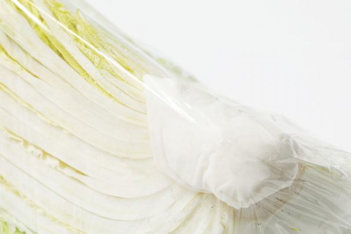 白菜 カット 冷蔵