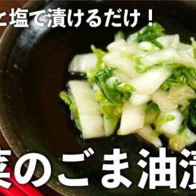 白菜をごま油と塩で漬けるだけ!コク旨な「白菜のごま油漬け」が危険なおいしさ!【ちょこっと漬け♯62】