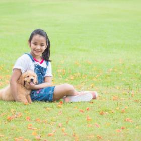 犬を飼って子育てにとってよかったこと。責任感が身についた、思いやりの心が育った、そして…