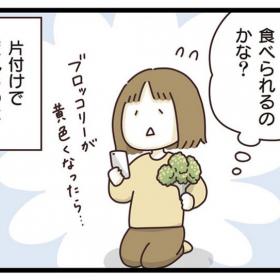 【コミック連載 vol.11】冷蔵庫の片付けは「コレまだ大丈夫?」と仕分ける作業が、疲れるのだなぁ(冷蔵庫・前編)