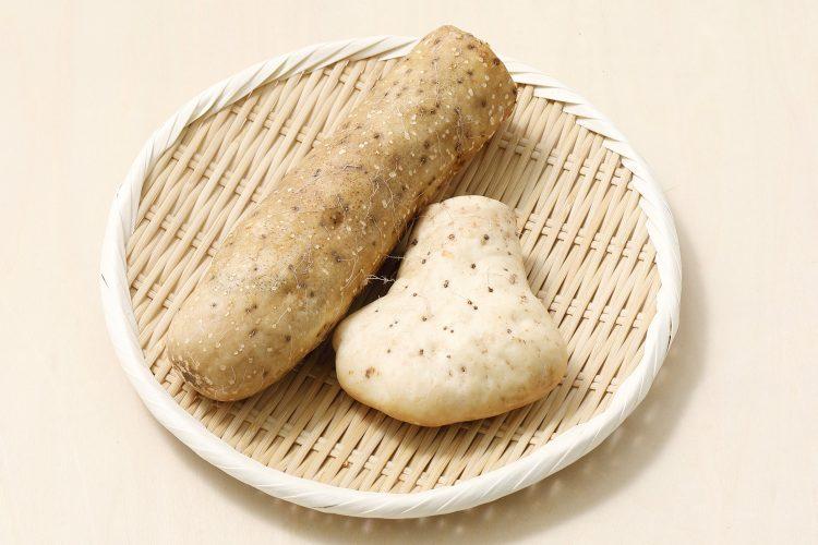 「山芋」がスタミナ食材といわれるワケは?長芋のとの違いは?山芋の栄養情報、上手な保存方法をじっくり解説【管理栄養士監修】