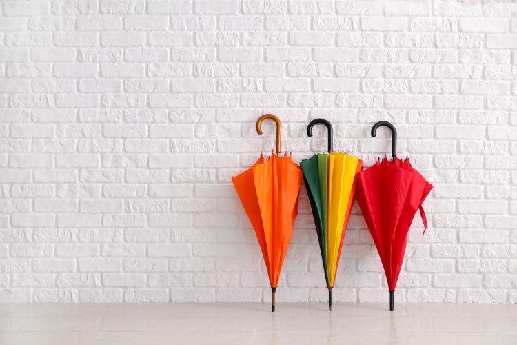 今どきの傘事情!使用頻度が高いのは長傘orビニ傘or折りたたみ?理由も聞いてみました