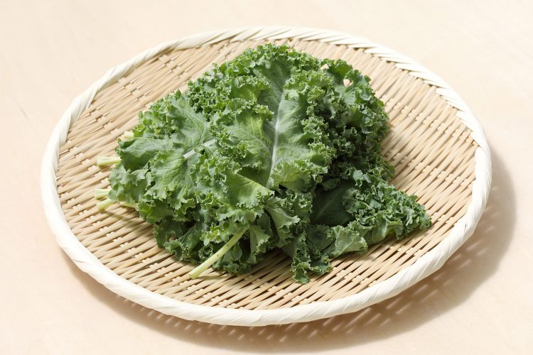 スーパー野菜ケールの栄養情報&栄養を活かした食べ方をご紹介!【管理栄養士監修】