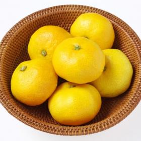 ビタミンCたっぷり!「みかん」の栄養から長持ちする保存方法まで解説します【管理栄養士監修】